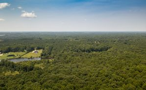 Lot A 13.6 Acres Branch Road York, SC 29745 - Image 1