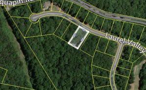 313 Laurel Valley Way Travelers Rest, SC 29690 - Image 1
