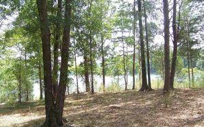 146 Island Water Drive Six Mile, SC 29682 - Image 1