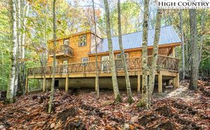 129 Staghorn Hollow Beech Mountain, NC 28604 - Image 1