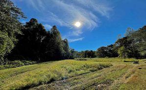 00 Tree Farm Road Walhalla, SC 29691 - Image 1
