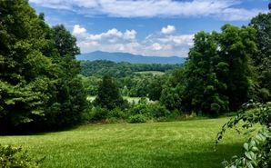 334 Colonels Trail Mount Airy, NC 27030 - Image 1